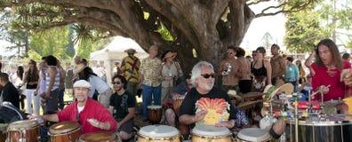 солнцеворот барабанщиков торжества стоковые изображения rf