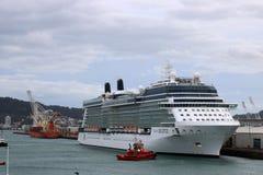 Солнцеворот знаменитости туристического судна в Веллингтоне NZ стоковая фотография