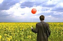 солнцецветы бизнесмена Стоковые Фотографии RF
