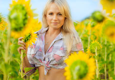 солнцецветы девушки поля молодые Стоковые Изображения RF