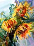 Солнцецветы желтого цвета букета цветков предпосылки искусства акварели творческие свежие живые текстурированные флористические Стоковые Изображения RF