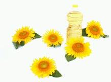 солнцецветы масла стоковая фотография