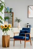 Солнцецветы на деревянной табуретке рядом с голубым креслом в интерьере живущей комнаты с плакатом Реальное фото стоковое фото