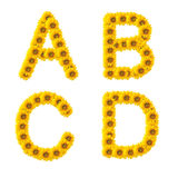 солнцецвет алфавита Стоковые Изображения RF