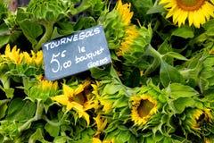 солнцецвет букетов Стоковое Фото