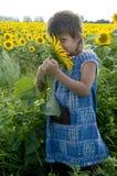 солнцецвет девушки Стоковое Фото