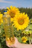 солнцецвет масла бутылки Стоковые Изображения RF