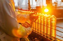солнцецвет масла падения стилизованный Линия фабрики продукции и заполнять очищенной нефти от семян подсолнуха Транспортер фабрик Стоковая Фотография RF