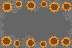 солнцецвет предпосылки Стоковая Фотография RF