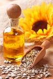 солнцецвет семян масла Стоковые Фотографии RF