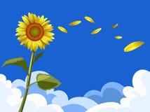 Солнцецвет с небом Стоковое Фото