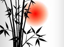 солнце бамбука предпосылки иллюстрация штока