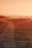 солнце в октябре утра Стоковое фото RF