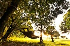 солнце гамака Стоковое Изображение RF