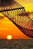 солнце гамака Стоковая Фотография