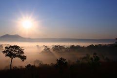 солнце горы стоковые фото