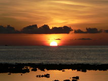 солнце Даунера Стоковое фото RF
