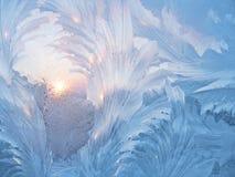 солнце заморозка стоковые изображения rf