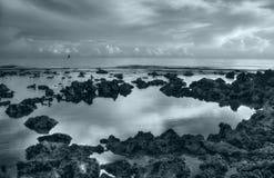 солнце кораллов поднимая Стоковые Изображения RF