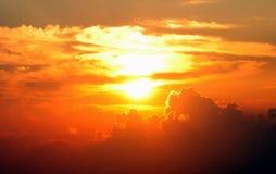 солнце короля Стоковое фото RF