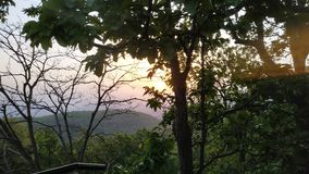 Солнце крадясь за деревьями стоковая фотография rf
