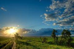 солнце к путю Стоковая Фотография RF