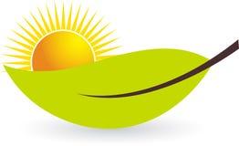солнце листьев иллюстрация штока