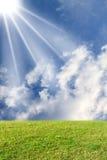 солнце лужка Стоковые Изображения