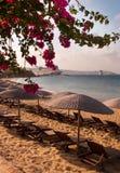 солнце моря песка Греции бугинвилии стоковое фото