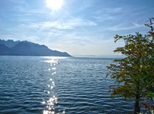 солнце озера geneva Стоковое фото RF