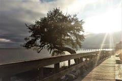Солнце осветило залива Стоковая Фотография