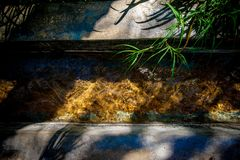 Солнце отражая в воде пропуская в falaj с зеленой травой стоковое фото rf