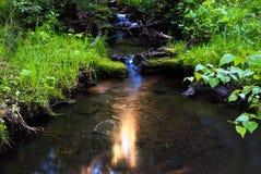 солнце отражения ручейка Стоковые Фотографии RF