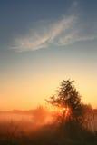 солнце первых лучей поднимая Стоковые Фотографии RF
