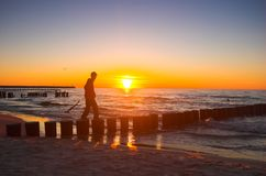 солнце персоны к гуляя детенышам Стоковое Фото