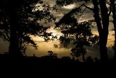 Солнце поднимает в туманное в утре стоковые фото