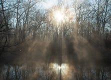 Солнце поднимает на национальный парк долины Cuyahoga стоковое фото rf