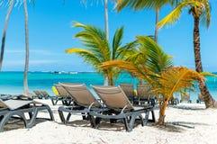Солнце предводительствует на пляже среди пальм в курорте стоковая фотография