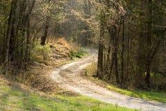 солнце проселочной дороги после полудня Стоковое Фото