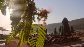 Солнечный день на пляже видеоматериал