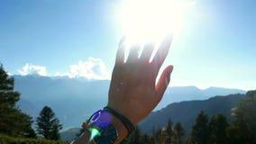 Солнце силуэта руки сток-видео