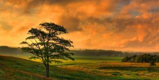 Солнце устанавливает в панораму долины стоковые изображения
