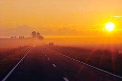 солнце утра Стоковые Изображения