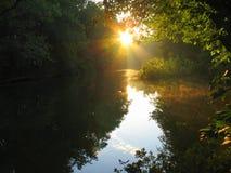 солнце утра Стоковое Фото