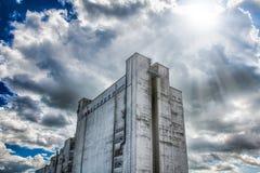 солнце фабрики Стоковые Фото