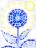 солнце цветка дня Стоковые Изображения RF