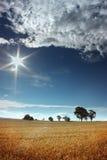 солнце i m стоковое изображение rf