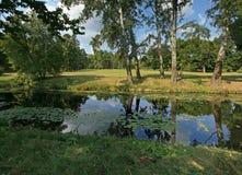 Солнц-облито озеро в парке в летнем дне, в расстоянии glade стоковая фотография