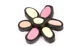 солодка цветка Стоковое Изображение