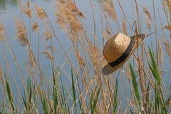 Соломенная шляпа в тростниках на озере стоковая фотография rf
